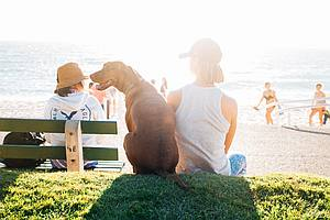 Frau mit Hund und vielen Menschen in der Sonne am See
