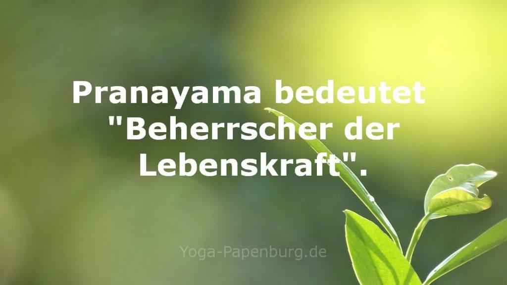 Pranayama bedeutet soviel wie Beherrscher der Lebenskraft